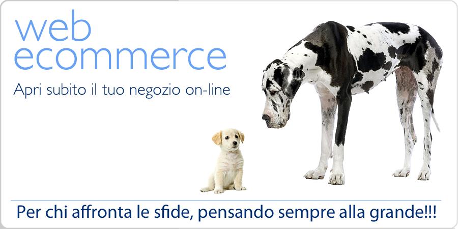 web ecommerce - il software per aprire da subito il tuo negozio online